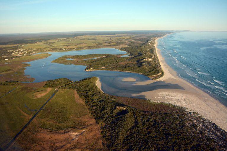 Estuary management