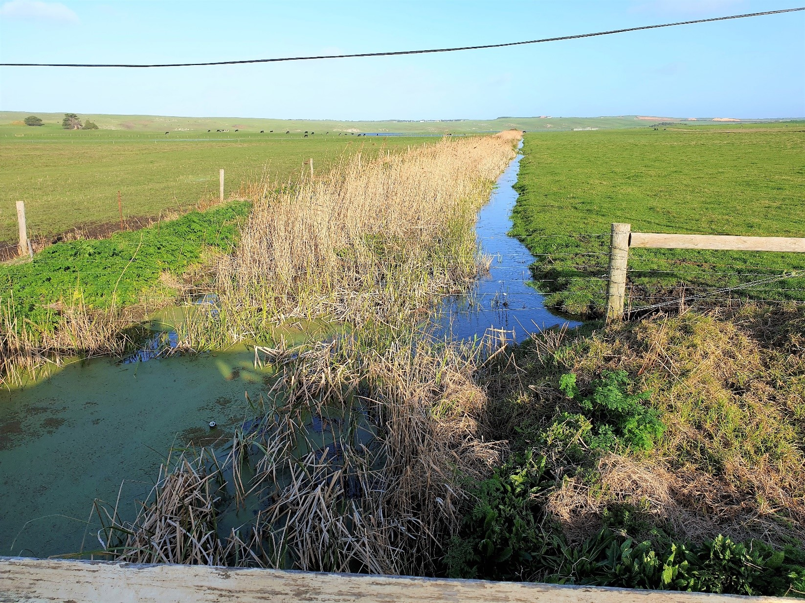 Rural Drainage Strategy